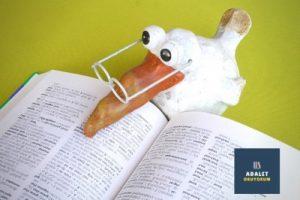 kitap okuyan gözlüklü bir beyaz kuş